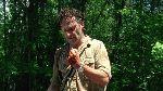 Las Novias De Gwangi: The Walking Dead -Temporada 6- Thank You