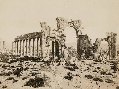 Bienvenidos a Palmira