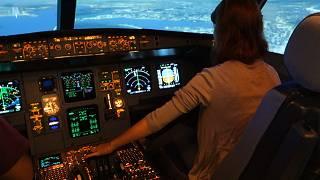 Great bustard's flight: Aterriza como puedas (...o la necesidad de un experto)