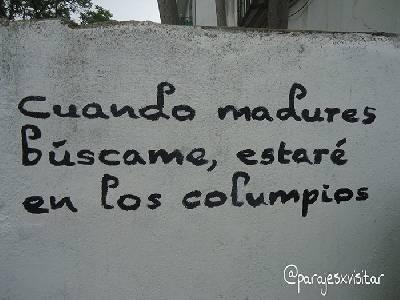 Colmenar Del Arroyo. Versos En Sus Calles.