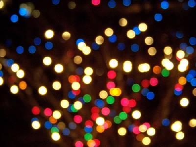 Bioluminiscencia: La Química De Las Luces Navideñas Naturales – Ciencia En Común