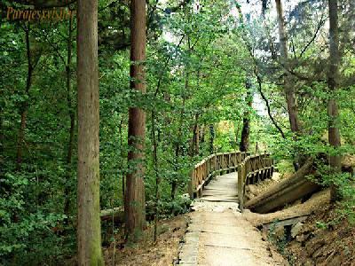 Parque Forestal De Villaviciosa De Odón
