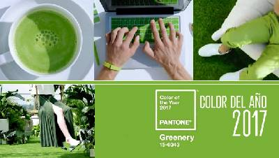 Rachel´s Fashion Room: Pantone color of the year 2017!