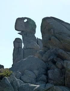 Ruta Del Dinosaurio