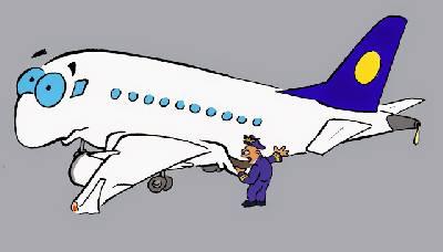 Great bustard's flight: ¿Qué es la lista de equipo mínimo (MEL)?