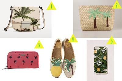 Obsesión por... ¡Las palmeras! - Buscando sitios chulos