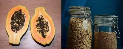 Temas de alto interés: Batido de Avena y Papaya para Bajar de Peso