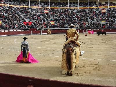 Muere el torero Iván Fandiño. La venganza de los toros