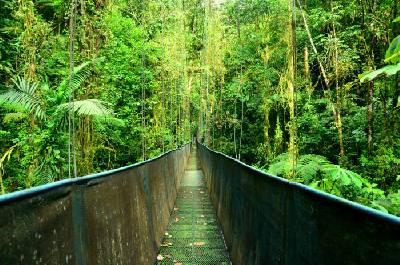 Cuatro parques nacionales en Costa Rica. ¡Pura vida!