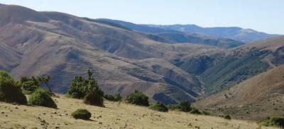 El monte ya no es lo que era - El Ecologista Transgénico