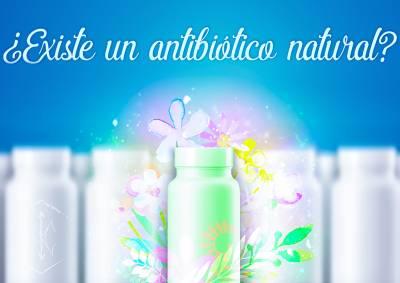 Antibióticos naturales que hay que conocer! - Apoteca Verde