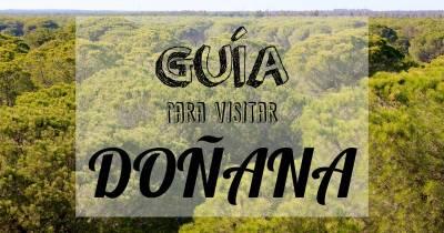 Parque de Doñana: Guía para visitar uno de los ecosistemas más importantes de España