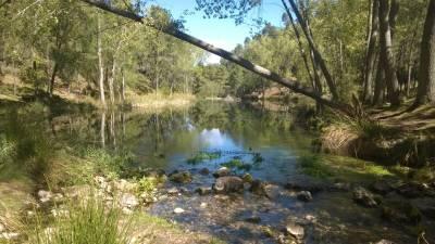 ArroyoFrío o Laguna de Cotillas #Cotillas #RioMundo #Niños #Familia #Albacete