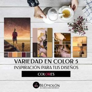 Variedad En Color 5 Cambios - blomolón