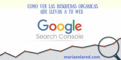 Cómo ver las búsquedas orgánicas en Google Search Console