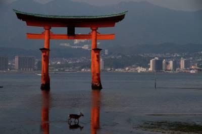 Miyajima e Hiroshima, entre la naturaleza y la guerra