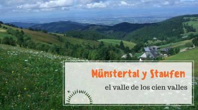 Münstertal y Staufen; en el valle de los cien valles - Creciendo de Viaje