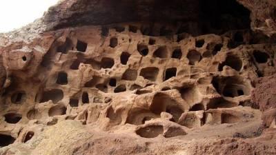 El laurel, el primer pesticida que emplearon los aborígenes grancanarios – HISTORICON