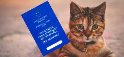 Pasaporte para gatos | Todo para tu Gato
