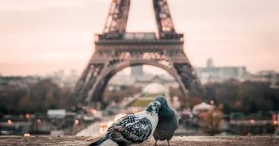 Sucumbe ante París en el autobús turístico