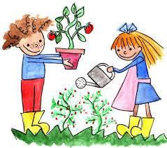 Todo sobre cómo fabricar un huerto urbano para niños | Bajandoalatierra. com