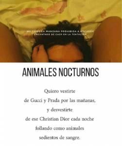 Animales nocturnos.