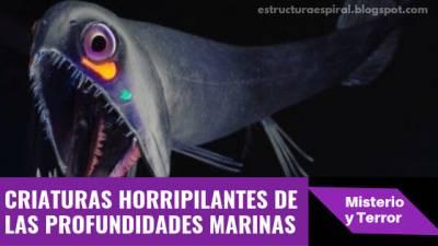 Las criaturas horripilantes que albergan las profundidades marinas