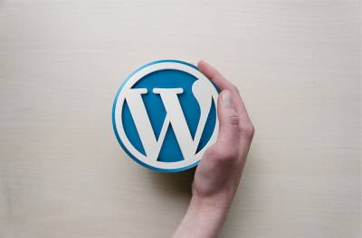 ¿Que es WordPress? - Nikana Diseño Web
