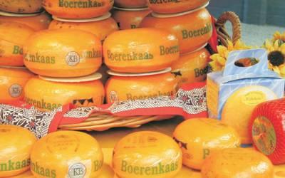 Tres viajes para descubrir el queso de Holanda