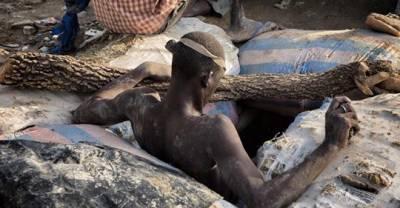 Land Grabbing (acaparamiento de la tierra), pobreza y hambruna