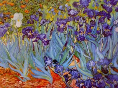 Van Gogh, El Dolor Del Alma