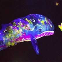 Un museo para flipar en colores; Mori Digital Art Museum Odaiba, Tokio