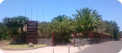 Parque Nacional de Garajonay: información y características