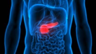'Un Equipo Liderado por Investigadores Españoles logra por Primera Vez curar en ratones el Cáncer de Páncreas