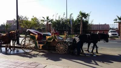 Transporte En Marrakech