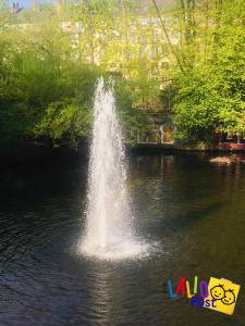 #miércolesmudo: En El Parque