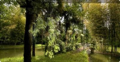 Jardín botánico y Parque Natural del Señorío de Bertiz