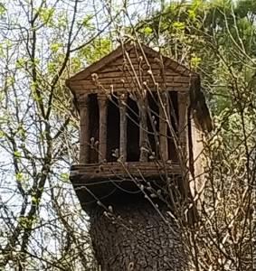 Una ruta original en el Bosc Encantat de Gurb