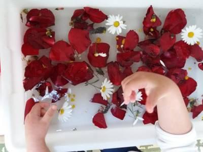 Ecología y Niños, amar la naturaleza