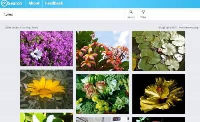 CC Search: buscador de imágenes de dominio público y Creative Commons