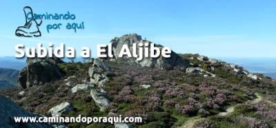 Sendero de El Aljibe en el PN de los Alcornocales