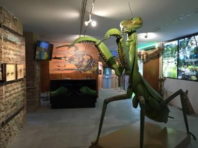 InsectPark, un viaje al mundo Jurásico a tan sólo 50km de Madrid