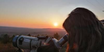 Observar lobos, no a cualquier precio - Pello's World
