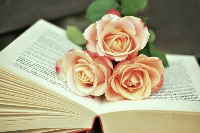 Flores preservadas, la mejor opción hoy en día