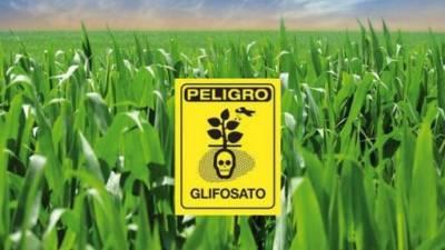 Chubut es la primera provincia en prohibir la venta y uso del glifosato en Argentina