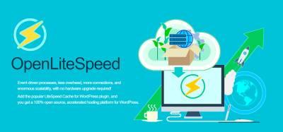 Hosting Optimizado para WordPress - OpenliteSpeed