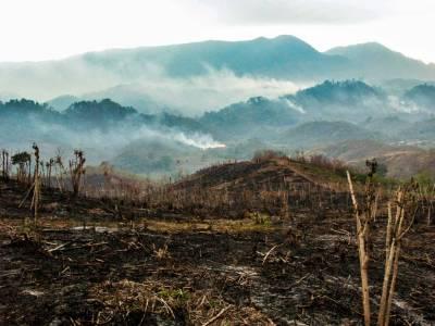 Cuando La Montaña Arde (2), México