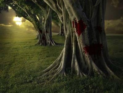 Árboles venenosos y asesinos.