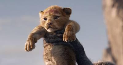 El rey león - National Geographic con temazos