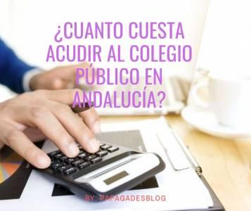 ¿Cuánto cuesta acudir al Colegio Público en Andalucía?
